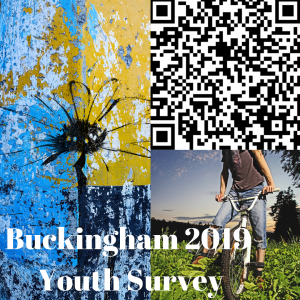 Buckingham Youth Survey 2019 picture