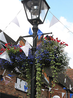 Hanging baskets on a street light