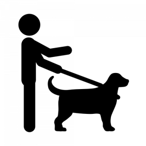 Stick Figure Walking Dog