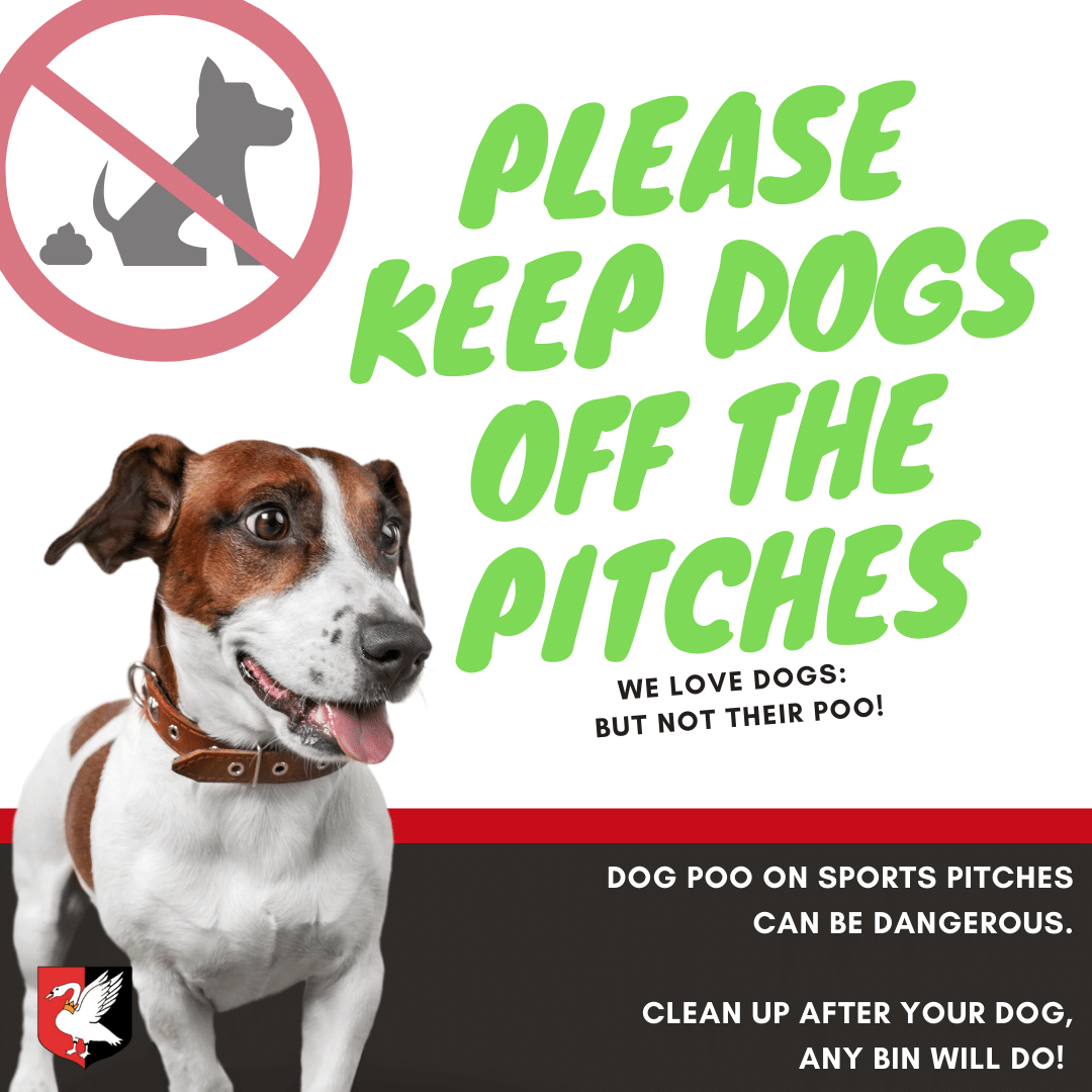 Keep Dogs Off the Pitches poster