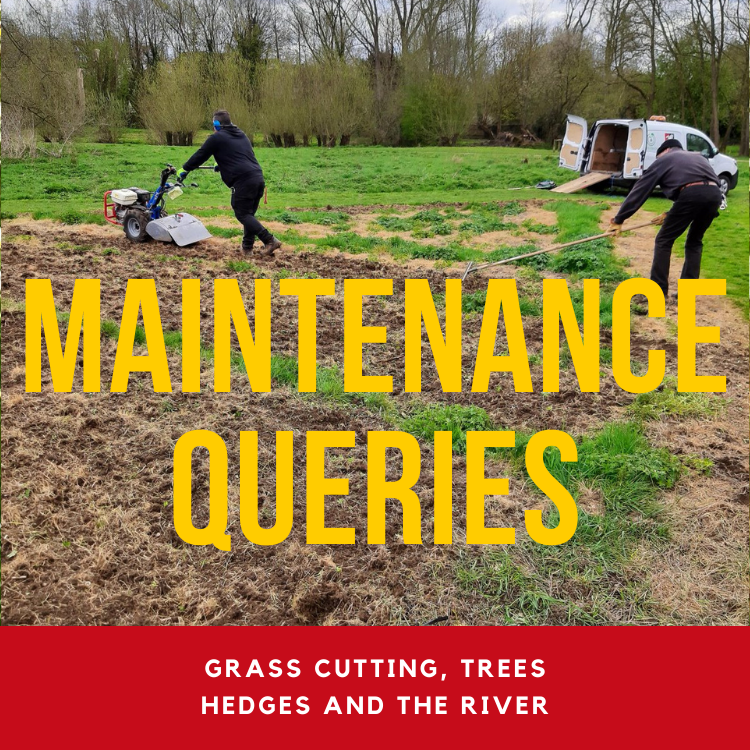 click here to visit the green spaces maintenance queries page