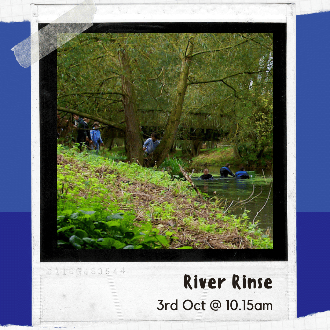 Click here to find out more about the 2nd river rinse